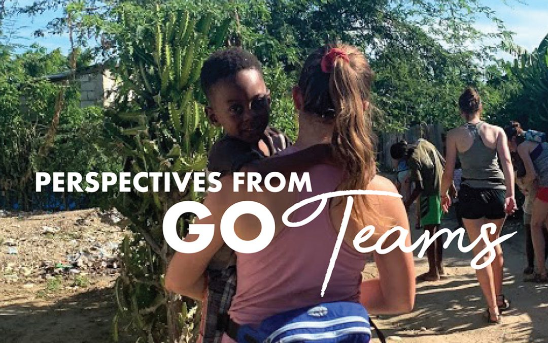 Perspectives From Go Teams