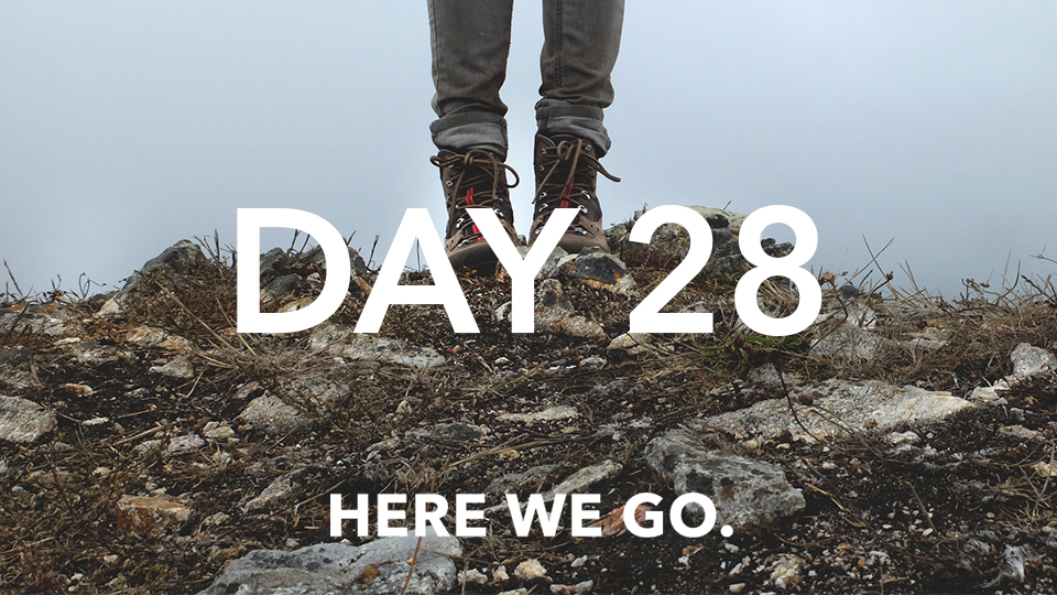 Day 28